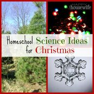 Homeschool Science I