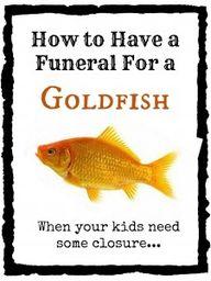 goldfish funeral, @P