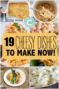 19 deliciously chees