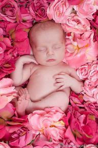 Baby in roses