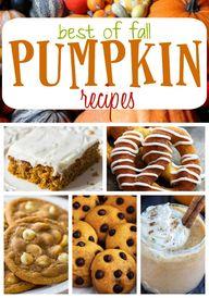 Best of Fall Pumpkin