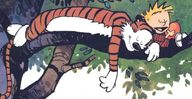 Calvin and Hobbes, w