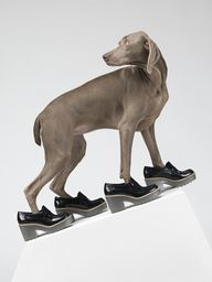 Acne William Wegman