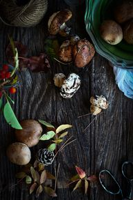 Wild Mushrooms Cypru