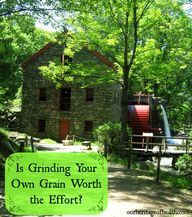 Is Grinding Your Own