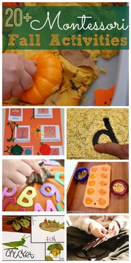 Montessori Fall Acti