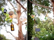 Suspended gumtrees t