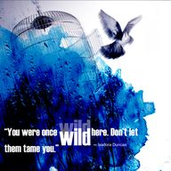 DON'T LET THEM TAME