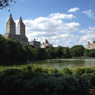 Central Park - Cherr