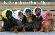 Is grandma gone yet