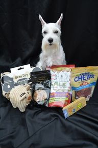 Pet Subscription Box