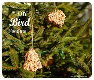 diy bird feeders {