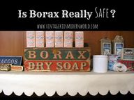Is Borax Really Safe