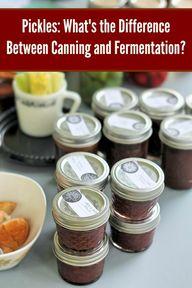 Canning vs. Fermenta