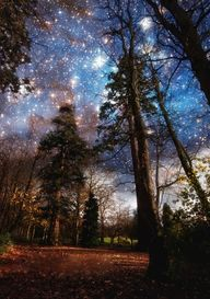 I love the heavens a
