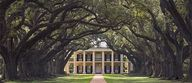 Oak Alley Plantation...