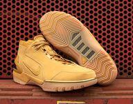 Nike Air Zoom / LeBr