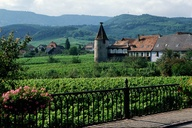 Alsace Wine Route, F