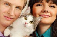 Cat Behavior:  When