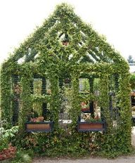A really green house