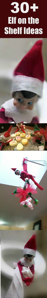 30+ Elf on the Shelf
