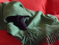 Brrrr....que frío...