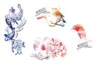 Colección de tatuaje