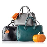 The IT bag for Fall!