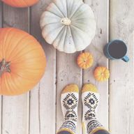 Pumpkins and socks
