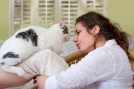 Cat Behavior: Whats