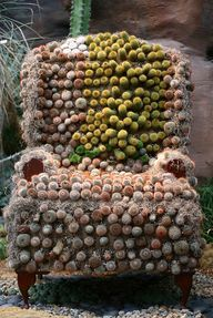 Cactus seating. Project to do with a vintage chair. Ouch!