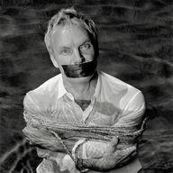 Sting by Olaf Heine...