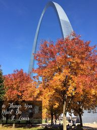 Explore St. Louis: 1