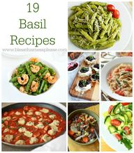 19 Beautiful Basil R