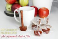 Homemade Apple Cider