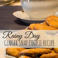 Rainy Day Ginger Sna