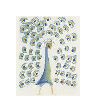 Peacock Scan.jpg