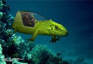 Under Water Car Driv