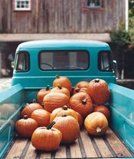 Pumpkins in a pick u