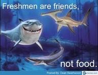 Freshmen are friends...