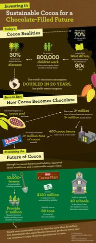 Nestle Cocoa Plan