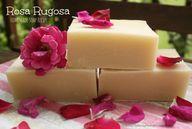 Rosa Rugosa Soap Rec