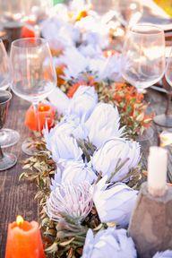 amazing paper protea