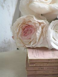 Rosa pale pink