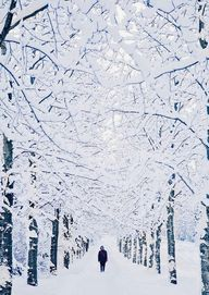 Winter Wonderland, R