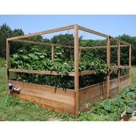 Large Vegetable Gard