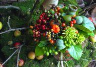 bouquet of berries w