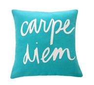 carpe diem pillow