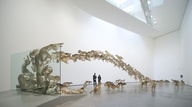 Head On by Cai Guo-Q