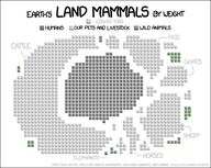 Land mammals by weig